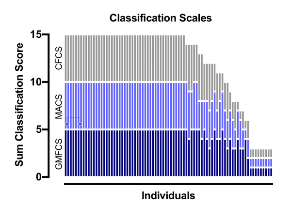 Classification Scores